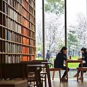 高晓松,你在杭州开的公益图书馆美哭我了!原来最高级的人生,是把做过的梦一个个实现!