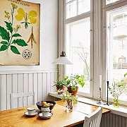 植物?#19968;?| 小时候玩过植物标本吗?用这3种方法把植物挂墙上,美翻了