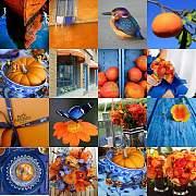 蓝色与橙色——你是这片海里最美的太阳
