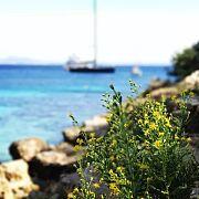 【长颈鹿安利帖】称霸朋友圈的欧洲小众蜜月地Mallorca