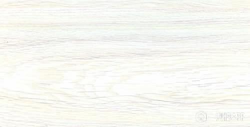 白橡木.jpg