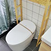 輕奢高級感,抗拒不了的如廁新體驗—箭牌AKB1305智能馬桶測評