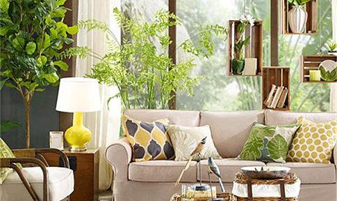 力天裝飾家居指南丨綠色飾界,打造屬于你和家的綠色春天