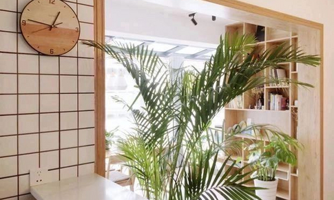 50平米的家,塞下了一個陽光餐廳