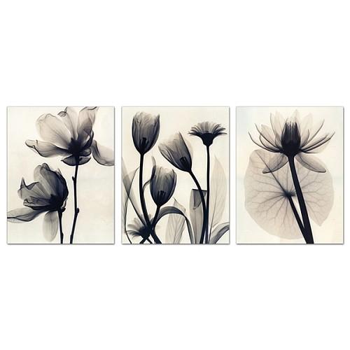 画帆布画无框画卧室花卉现代装饰画客厅挂画黑