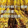 心随路远-dea91540